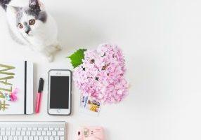 Miten rakennat liiketoiminnan blogin ympärille?